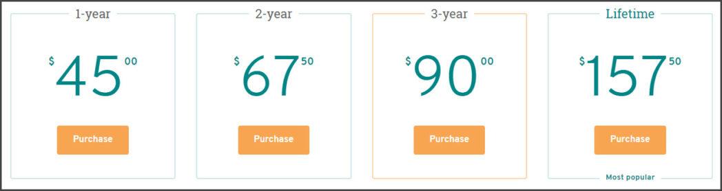 ProWritingAid Premium Pricing